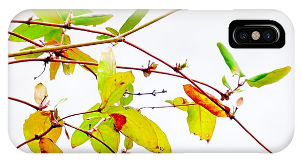 Green Twigs And Leaves IPhone Case