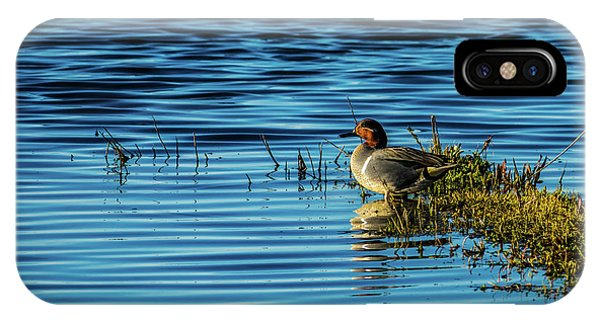 Green-winged Teal IPhone Case