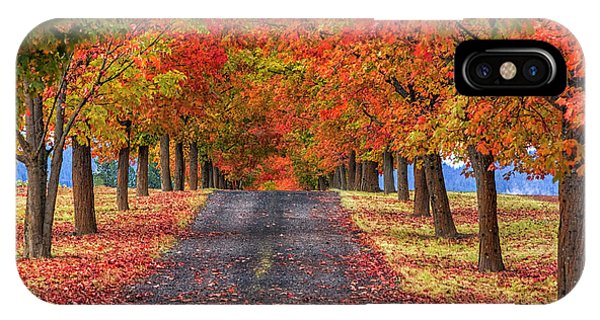 Greenbluff Autumn IPhone Case