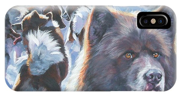 Sled Dog iPhone Case - Greenland Dog by Lee Ann Shepard