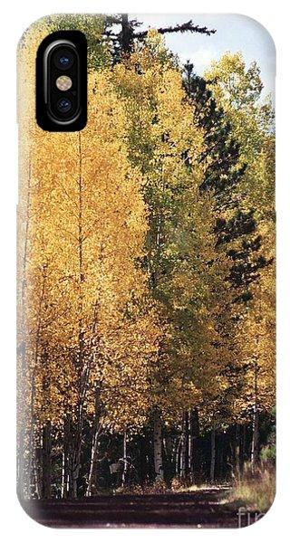 Greer Arizona Aspen Trees IPhone Case