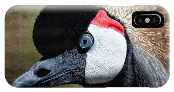 Grey - Crowned Crane IPhone Case