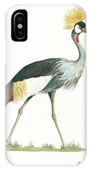 Crane iPhone Case - Grey Crowned Crane by Juan Bosco