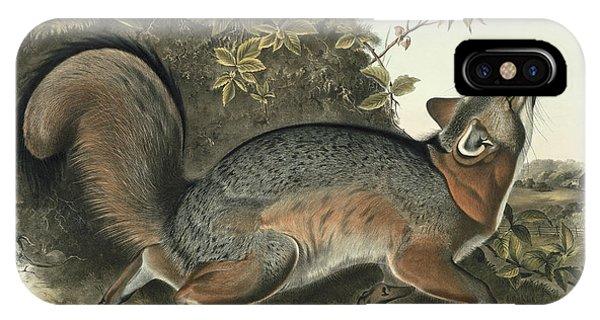 Audubon iPhone X Case - Grey Fox by John James Audubon