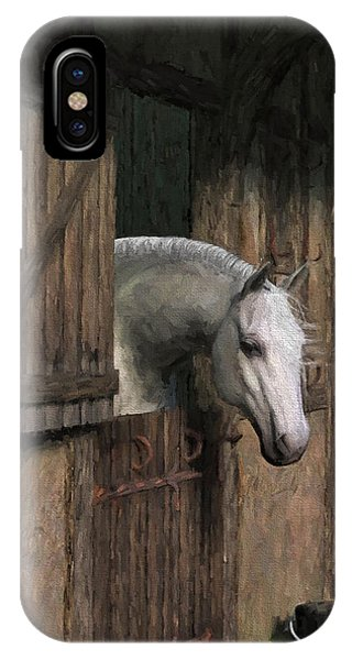 Grey Horse In The Stable - Waiting For Dinner IPhone Case