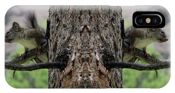 Grey Squirrels On The Look Out IPhone Case
