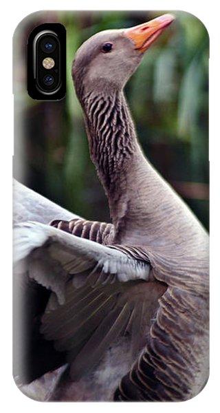 Greylag Goose Poetry IPhone Case