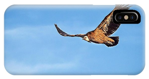 Griffon Vulture IPhone Case