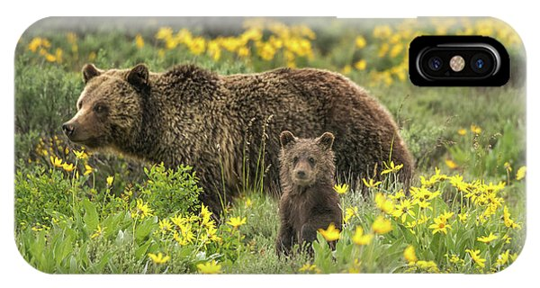Grizzlies In The Wildflowers IPhone Case