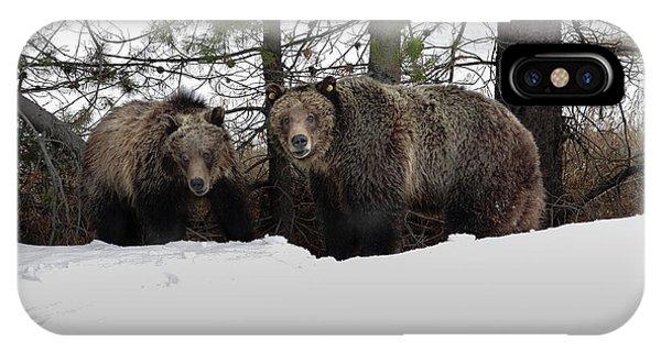 Grizzlies IPhone Case