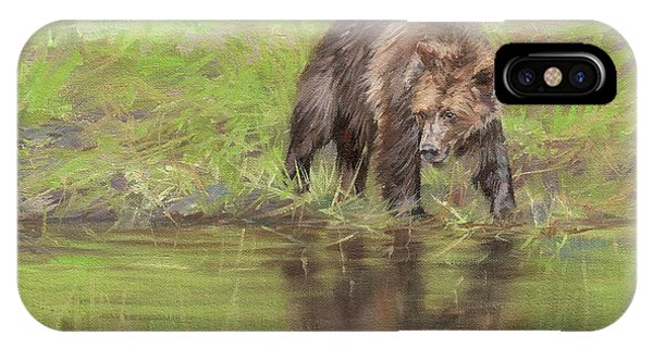 Bear Creek iPhone Case - Grizzly Bear At Water's Edge by David Stribbling
