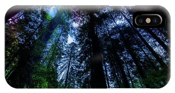 Grizzly Creek Redwood Grove Phone Case by Blake Webster