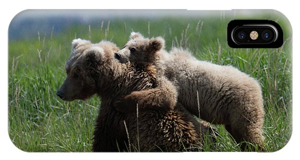Grizzly  Mother And A Cub In Katmai National Park IPhone Case