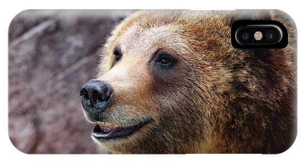 Grizzly Smile IPhone Case