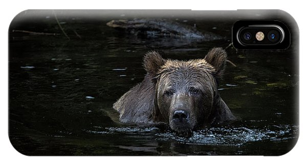Grizzly Swimmer IPhone Case