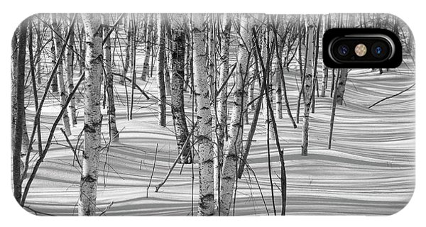 Group Of White Birches IPhone Case