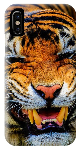 Growling Tiger IPhone Case