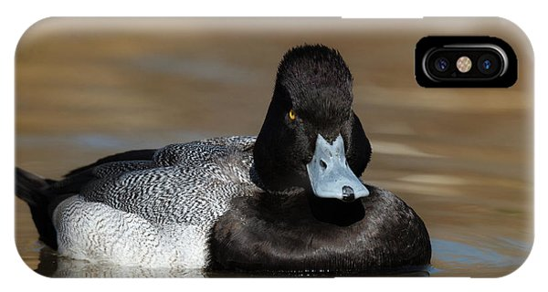 Grumpy Duck IPhone Case