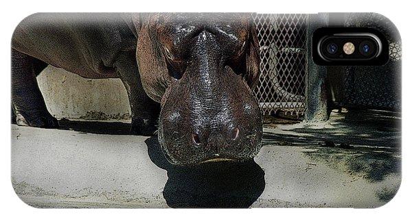 Grumpy Rhino IPhone Case