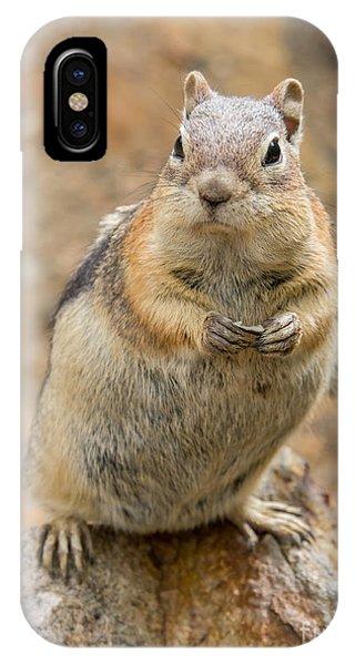 Grumpy Squirrel IPhone Case