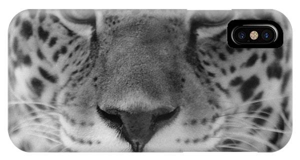 Grumpy Tiger  IPhone Case