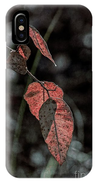 IPhone Case featuring the photograph Grungy Leaves by Elaine Teague