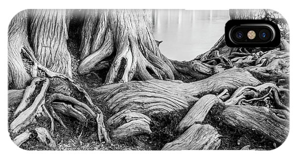 Guadalupe Bald Cypress In Black And White IPhone Case