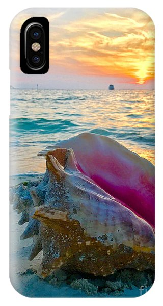 iPhone Case - Guana Conch  by Carey Chen