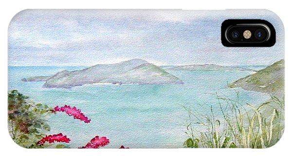 Guana Island IPhone Case