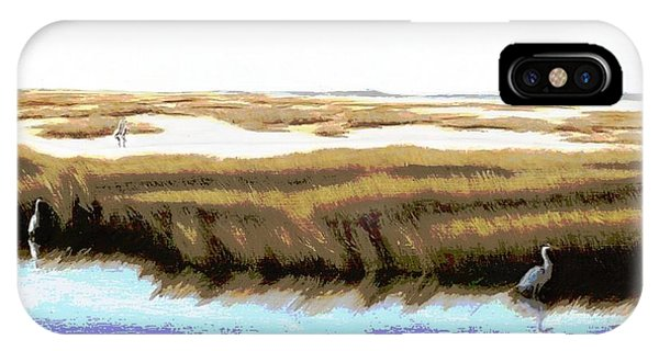 IPhone Case featuring the painting Gulf Coast Florida Marshes I by G Linsenmayer