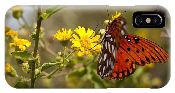 Agraulis Vanillae iPhone Case - Gulf Fritillary Agraulis Vanillae Red Butterfly by Dustin K Ryan