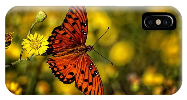 Agraulis Vanillae iPhone Case - Gulf Fritillary Butterfly by Phill Doherty