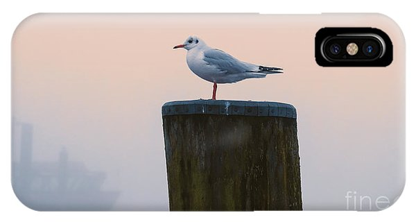 Gull And Fog IPhone Case