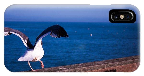 Gull Dance IPhone Case