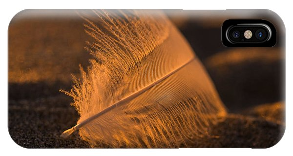 Gull Feather At Sunset IPhone Case