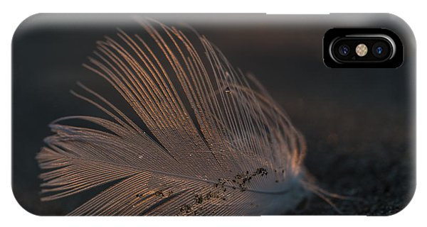 Gull Feather On A Beach IPhone Case