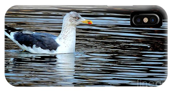 Gull On Winter's Pond  IPhone Case
