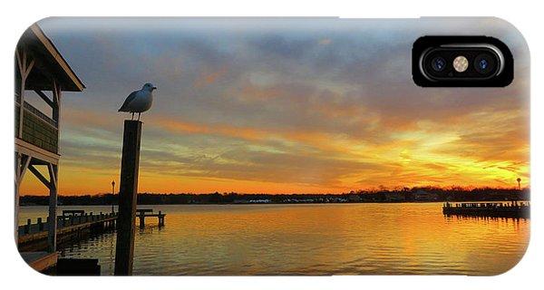 Gull Sunset IPhone Case