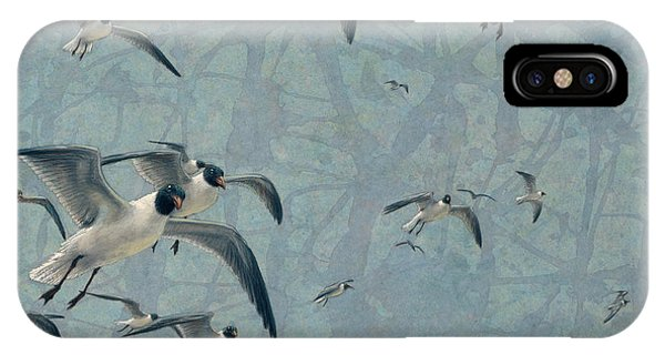 Seagull iPhone Case - Gulls by James W Johnson