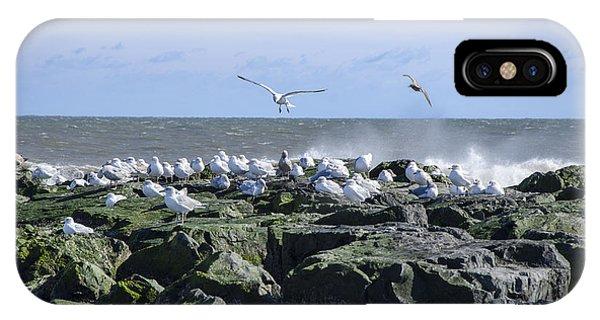 Gulls On Rock Jetty IPhone Case
