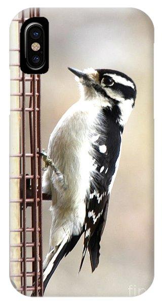 Hairy Woodpecker IPhone Case