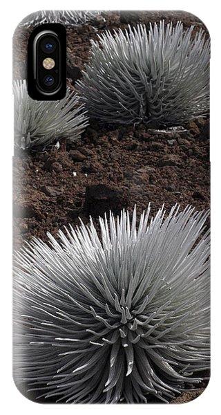 Haleakala Silverswords IPhone Case