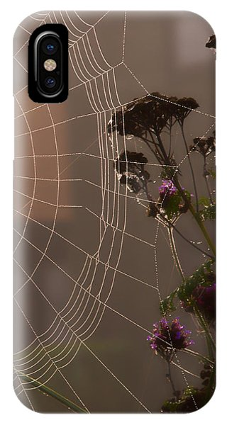 Half A Web IPhone Case