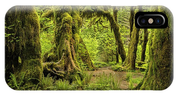 Hall Of Mosses - Olympic National Park IPhone Case