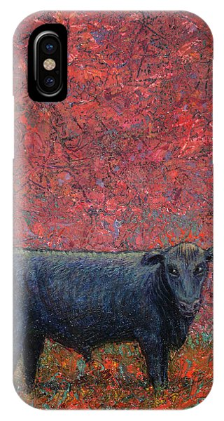 Bull iPhone Case - Hamburger Sky by James W Johnson