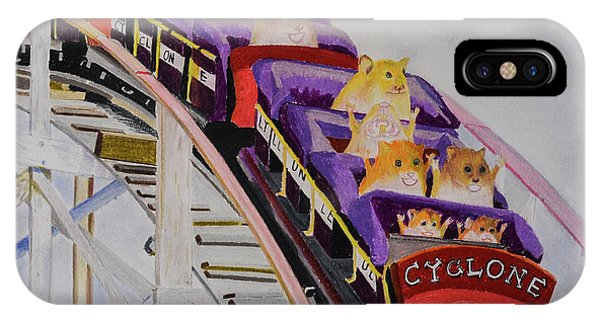 Hamster iPhone Case - Hamster On Roller Coaster by Seong Il Song