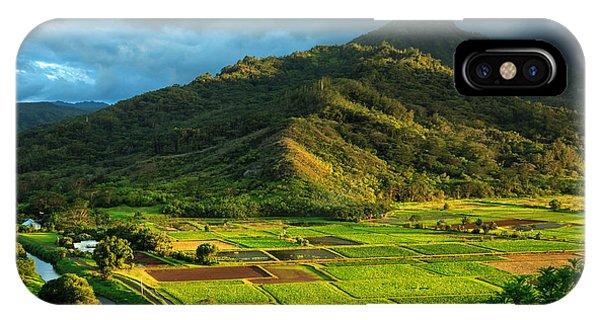Hanalei Valley Taro Fields IPhone Case