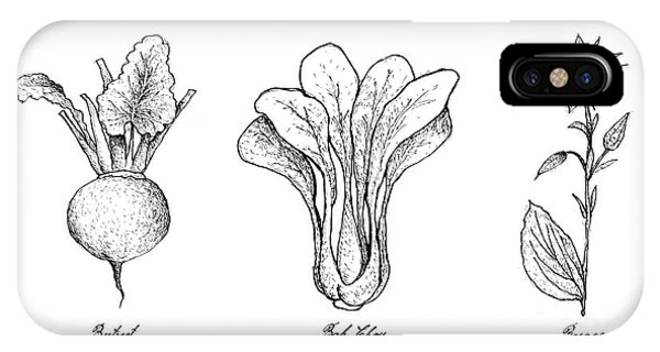 Mustard iPhone Case - Hand Drawn Of Beetroot, Bok Choy And Borage by Iam Nee