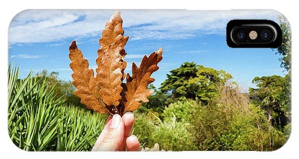 Hand Holding A Beautiful Oak Leaf IPhone Case