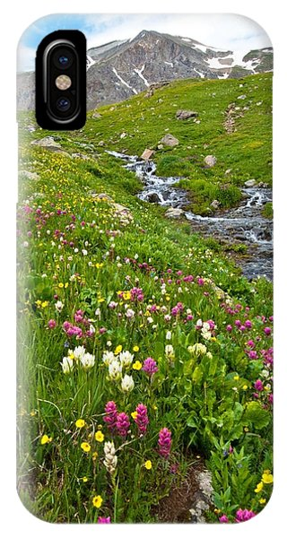 Handie's Peak And Alpine Meadow IPhone Case